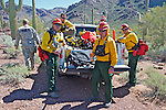 Firefighters in Organ Pipe Cactus National Monument.