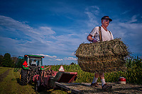Sam Bigham loads a trailer with fresh hay recently baled on his family's Westerville, OH, farm. Bigham's family has owned the farm since 1920 but recently signed a contingency contract to sell the land to a housing developer. It is the last working farm in the city.