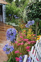Gorgeous plantings of Achillea flowers, summer flowering bulb Agapanthus, Coreopsis, ornamental grass, wooden curved walkway, white fence, gazebo