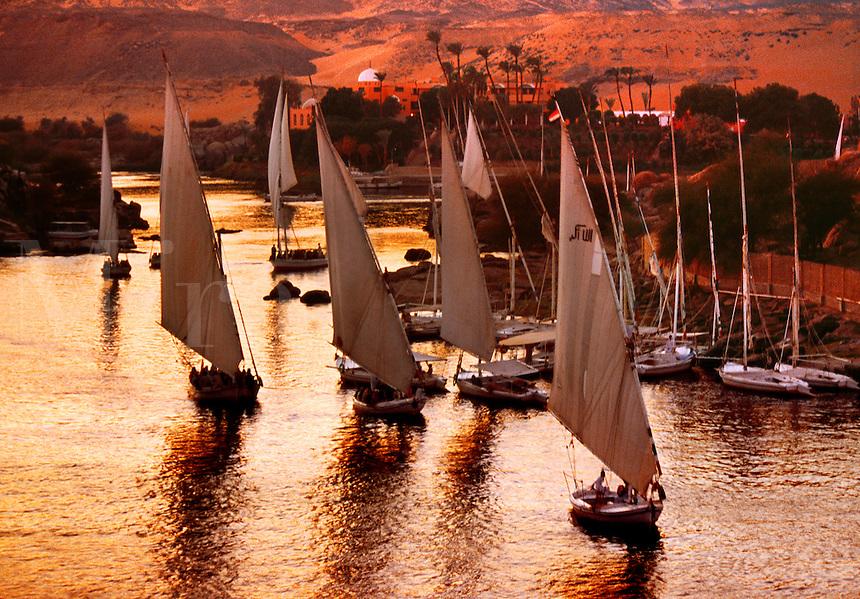 Traditional sailing Feluccas on the Nile Aswan Egypt.