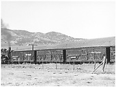 3/4 view of D&amp;RGW stock cars #5979, an unmarked car and #5920 in train east of Sargent.  D&amp;RGW #483 is the pusher on this train and the smokebox portion is visible.<br /> D&amp;RGW  e. of Sargent, CO  Taken by Richardson, Robert W. - 10/9/1953