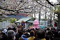Kanamara Matsuri - Steel Phallus Festival 2014
