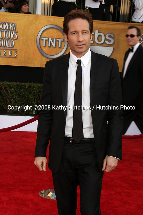 David Duchovny . arriving at the Screen Actors Guild Awards, at the Shrine Auditorium in Los Angeles, CA on .January 25, 2009.©2008 Kathy Hutchins / Hutchins Photo..
