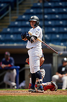 Staten Island Yankees third baseman Andres Chaparro (26) at bat during a game against the Lowell Spinners on August 22, 2018 at Richmond County Bank Ballpark in Staten Island, New York.  Staten Island defeated Lowell 10-4.  (Mike Janes/Four Seam Images)