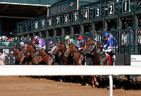 LEXINGTON, KY - April 15, 2017.  Start of the Stonestreet Lexington Stakes.  #3 Senior Investment and jockey Channing Hill (outside red, blue and white stars) win the 36th running of The Stonestreet Lexington Grade 3 $200,000 for owner Fern Circle Stables and trainer Kenneth McPeek at Keeneland Race Course.  Lexington, Kentucky. (Photo by Candice Chavez/Eclipse Sportswire/Getty Images)