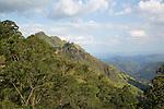View of Ella Gap pass, Ella, Badulla District, Uva Province, Sri Lanka, Asia focus on Little Adam's Peak