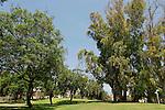 Israel, Southern Coastal Plain. Sanhedrin Park in Yavne'