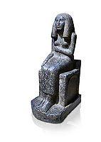 Ancient Egyptian statue of princess Redji, grandorite, Saqqara, Old Kingdom, 3rd Dynasty (2592-2543 BC). Egyptian Museum, Turin. white background.<br /> <br /> The inscriptions at the base of the statue indicates that the statue is of the Kings Daughter named Redji. Never intended as a faithful depiction of the deceased , the statue was placed in the tomb to substitute for the deceased. The statue is in the typical rigid style of the old kingdom with a voluminous wig.