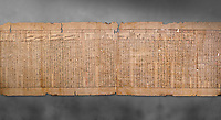 """Anciient Egyptian Book of the Dead papyrus - Spell 30 for stopping the heart betraying the deceased at the tribunal of Osiris, Iufankh's Book of the Dead, Ptolemai period (332-30BC).Turin Egyptian Museum. Grey Background<br /> <br /> the spell reads ' Stand not against me as a witness, oppose me not in the Council, act not against me before the gods, outweigh me not before the great God, the Lord os the West""""<br /> <br /> The translation of  Iuefankh's Book of the Dead papyrus by Richard Lepsius marked a truning point in the studies of ancient Egyptian funereal studies."""