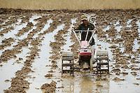 Laos, farmer ploughs paddy field with hand tractor / Laos, Farmer pfluegt Reisfeld mit Handtraktor