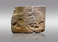 Picture &amp; image of Hittite monumental relief sculpted orthostat stone panel of a Procession. Basalt, Karkamıs, (Kargamıs), Carchemish (Karkemish), 900-700 B.C. Anatolian Civilisations Museum, Ankara, Turkey. Two animals struggling with each other. The lion attacking the bull holds the bull's chin and turns it backwards.  <br /> <br /> Against a gray background.