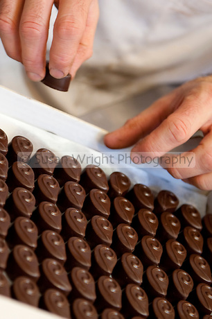 Hand made, artisan chocolate being packed into boxes at Andrea Bianchini's 'La Bottega del Cioccolato' popular chocolate boutique in Santa Croce area of Florence, Italy.