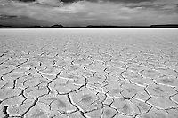 Alvord Desert with mud patterns. Oregon