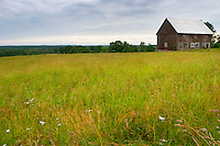 An old barn house on a field. Traditional style Swedish wooden painted house. Barn Smaland region. Sweden, Europe.