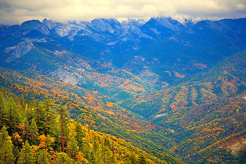 THE FALL COLORS HAVE ARRIVED IN SEQUOIA NATIONAL PARK, CALIFORNIA