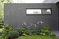 The grey wall of the modern property which extends into the garden creates the perfect backdrop for a variety of plants