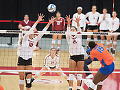 Razorback Volleyball 2017
