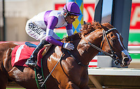 August 5 2015: Mraek with Mario Gutierrez up wins the Graduation Stakes at Del Mar Race Course in Del Mar CA. Zoe Metz/ESW/CSM