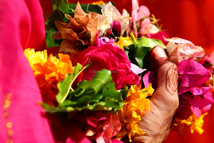 1O.11.2007 Udaipur(Rajasthan)<br /> <br /> Hand of woman holding offering of petals flowers while waiting to go in the temple during Diwali.<br /> <br /> Main de femme tenant une offrande de p&eacute;tales de fleurs en attendant pour aller au temple  pendant la f&ecirc;te de Diwali.