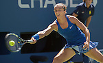 Sara Errani (ITA) defeats Venus Williams (USA) 6-0, 0-6, 7-6