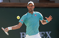NOVAK DJOKOVIC (SRB)<br /> <br /> BNP PARIBAS OPEN, INDIAN WELLS, TENNIS GARDEN, INDIAN WELLS, CALIFORNIA, USA<br /> <br /> &copy; TENNIS PHOTO NETWORK