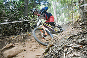 8th September 2017, Smithfield Forest, Cairns, Australia; UCI Mountain Bike World Championships; Danny Hart (GBR) riding for MS Mondraker Team during the downhill official timed session;