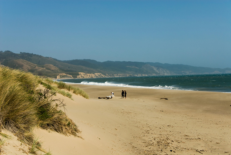 California: Limantour Beach at Point Reyes National Seashore near San Francisco. Photo copyright Lee Foster. Photo # casanf81285