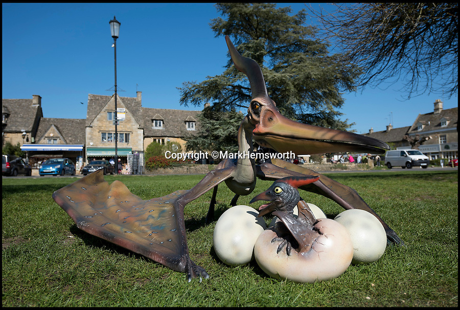 BNPS.co.uk (01202 558833)<br /> Pic: MarkHemsworth/BNPS<br /> <br /> A dinosaur and its eggs on the river bank o fBourton-on-the-Water.<br /> <br /> Visitors to one of Britain's oldest villages are used to seeing historic sights but many couldn't believe their eyes when a herd of life-sized dinosaurs descended on the picturesque settlement.<br /> <br /> The group of model dinosaurs made a startling sight as they made their way through Bourton-on-the-Water in Gloucestershire while on their way to the nearby Birdland attraction where they will form part of a new display.<br /> <br /> Some people looked on curiously as a velociraptor crossed the village's historic stone bridge while a cearadactylus in the River Windrush also caused some bemusement.