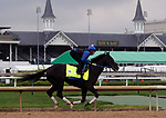 April 28, 2019 : Long Range Toddy works out  at Churchill Downs, Louisville, Kentucky, preparing for a start in the Kentucky Derby. Owner Willis Horton Racing LLC, trainer Steven M. Asmussen. By Take Charge Indy x Pleasant Song (Unbridled's Song) Mary M. Meek/ESW/CSM