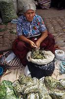 Amérique/Amérique du Sud/Pérou/Pisac : Le marché - Marchand de feuilles de coca