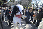 TOKYO, JAPAN - FEBRUARY 3: A dog costume and people with their beloved pets carry to pray for good health in Zojoji Temple in Tokyo on Feb. 3, 2019 during the annual mamemaki or the bean-throwing ceremony. The ritual ceremony is observed at temples and shrines throughout the country, is believed by Japanese to drive out the demons of misfortune and it is considered as the beginning of spring. (Photo: Richard Atrero de Guzman/Aflo)