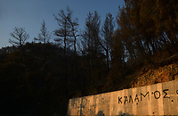 "Pictured: Burned forest next to a ""Kalamos"" graffiti.<br /> Re: A forest fire has been raging in the area of Kalamos, 20 miles north-east of Athens in Greece. There have been power cuts, country houses burned and children camps evacuated from the area."