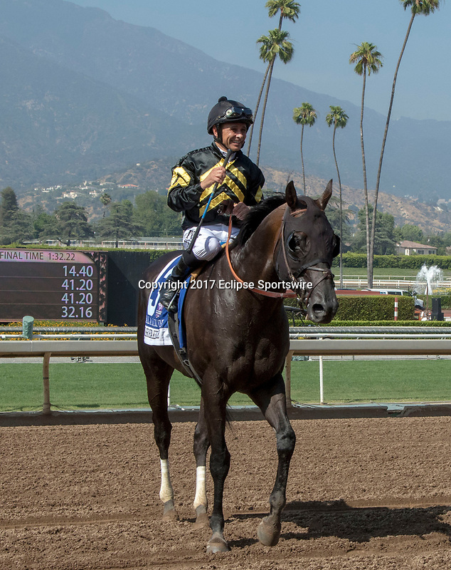 """ARCADIA, CA. JUNE 3: #3 Bal a Bali ridden by Mike Smith after winning the Shoemaker Mile (Grade l), Breeders' Cup """"Win and You're In"""" race on June 3, 2017, at Santa Anita Park in Arcadia, CA. (Photo by Casey Phillips/Eclipse Sportswire/Getty Images)"""