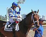 HALLANDALE BEACH, FL - MAR 3:  Maraud #2 with jockey John Velazquez on board, gets ready for the winners' circle after winning the Palm Beach G3 Stakes, at Gulfstream Park on March 3, 2018 in Hallandale Beach, Florida. (Photo by Liz Lamont/Eclipse Sportswire/Getty Images)