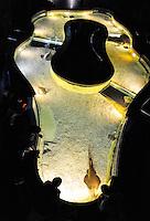 Spain, Barcelona. Aquarium Barcelona located in Port Vell. Guitarfish.