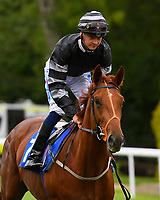 Masters Apprentice ridden by Mitch Godwin goes down to the start of the  M J Church British EBF Novice Stakes (Plus 10) (Div 2),  during Afternoon Racing at Salisbury Racecourse on 7th August 2017