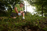 NWA Democrat-Gazette/ANDY SHUPE<br /> Nate Weston, program coordinator for Beaver Watershed Alliance, uses a gardening tool Thursday, Sept. 13, 2018, while working to remove unwanted plants from a rain garden during a work day in Walker Park in Fayetteville. A rain garden uses native plants in a depression to collect and temporarily store water during storms to reduce erosion and naturally filter runoff.
