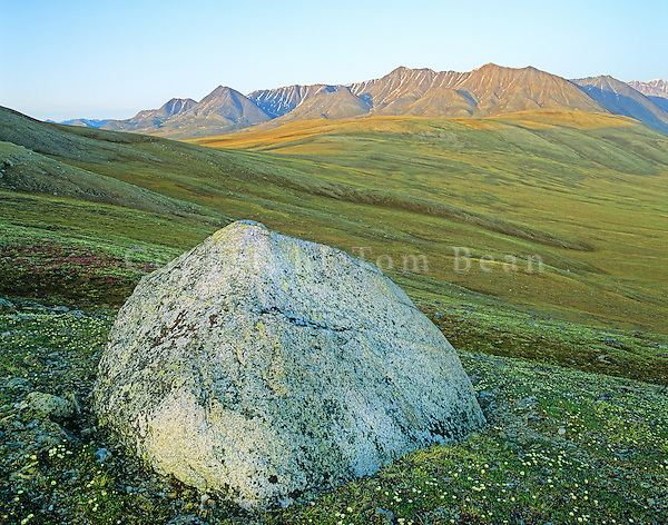 Solitary glacial eratic boulder stands on the tundra in the Jago River Valley in the Romanzof Mountains part of the Brooks Range in the Arctic National Wildlife Refuge, Alaska, AGPix_0721.