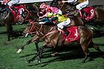 Jockey #4 Matthew Chadwick riding Gamechangers (C) during the race 7 of Hong Kong Racing at Happy Valley Race Course on November 29, 2017 in Hong Kong, Hong Kong. Photo by Marcio Rodrigo Machado / Power Sport Images