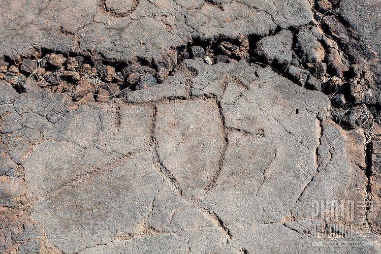 A petroglyph or ki'i pohaku at the Waikoloa Petroglyph Field (a.k.a. 'Anaeho'omalu Petroglyph Field), Big Island.