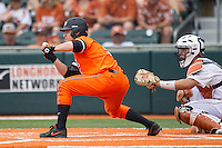 Oklahoma State Cowboys shortstop Donnie Walton #5 squares to bunt during the NCAA baseball game against the Texas Longhorns on April 26, 2014 at UFCU Disch–Falk Field in Austin, Texas. The Cowboys defeated the Longhorns 2-1. (Andrew Woolley/Four Seam Images)