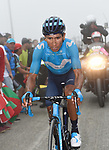 Nairo Quintana (COL) Movistar Team loses a minute on GC and slips down to 6th place on the final climb of Stage 17 of the La Vuelta 2018, running 157km from Getxo to Balcón de Bizkaia, Spain. 12th September 2018.                   <br /> Picture: Colin Flockton | Cyclefile<br /> <br /> <br /> All photos usage must carry mandatory copyright credit (© Cyclefile | Colin Flockton)