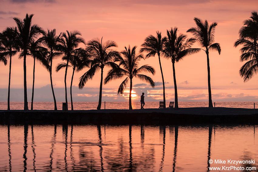 An orange sunset w/ palm trees at Waikoloa, Big Island, Hawaii