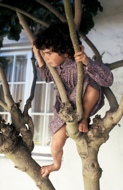 Berkeley CA Girl c. 5-yrs-old, climbing tree MR