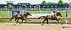 Divorce Party winning at Delaware Park on 8/17/13