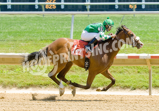 Rehab Mo winning at Delaware Park on 5/31/12