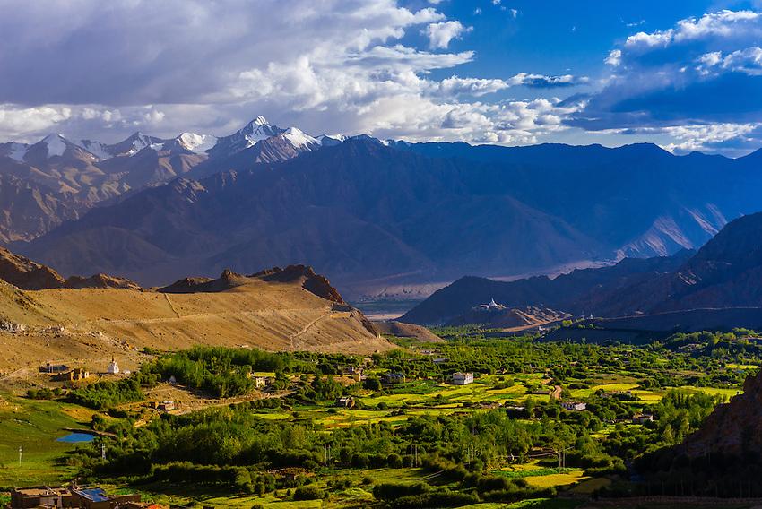 Yurtung, lush agricultural landscape near Leh, Ladakh, Jammu and Kashmir State, India.