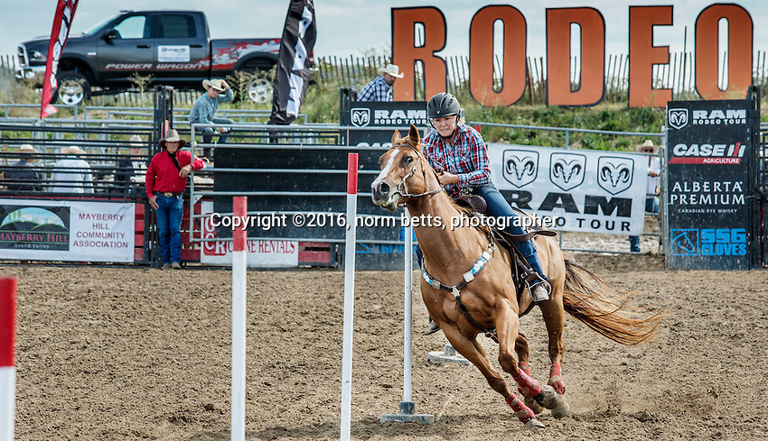 The RAM Rodeo in Grand Valley, Ontario, Canada , 13-14 Aug'16<br /> photos by Norm Betts<br /> normbetts@canadianphotographer.com<br /> &copy;2016, Norm Betts, photographer<br /> 416 460 8743