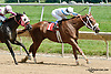 Strong Indian winning and subsequently being DQ'd at Delaware Park on 7/18/13