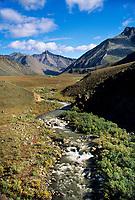 Stream drains out of the Arctic National Wildlife Refuge, Brooks Range, Alaska